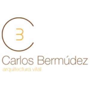 Carlos-Bermudez-min